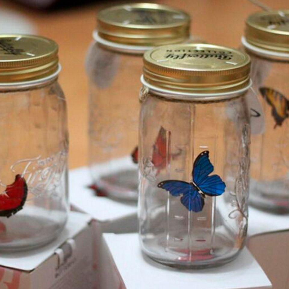 Mariposa-en-un-tarro-3