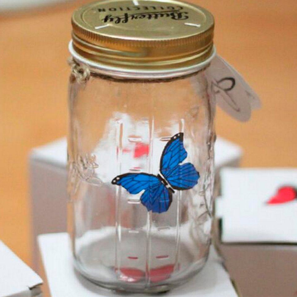 Mariposa-en-un-tarro-4