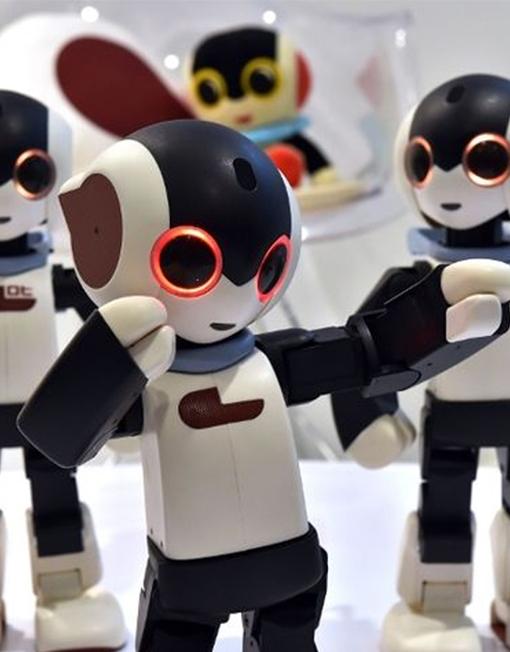 robi-robot-varios