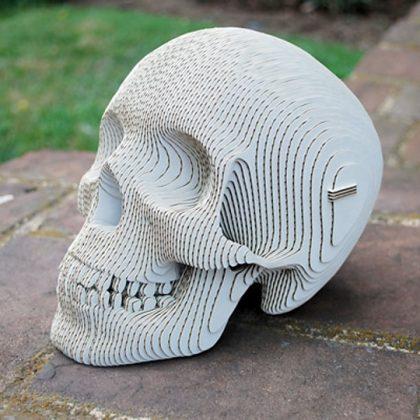 Cráneo Humano de Cartón Vince