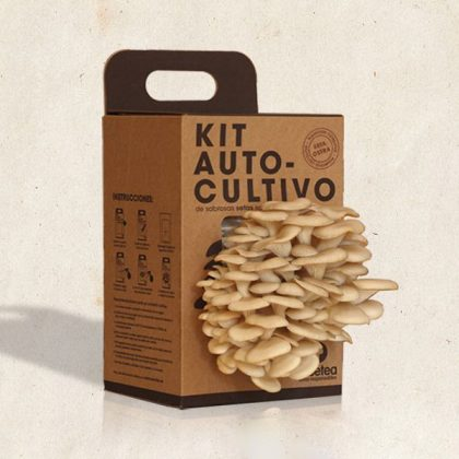 Kit de autocultivo de setas