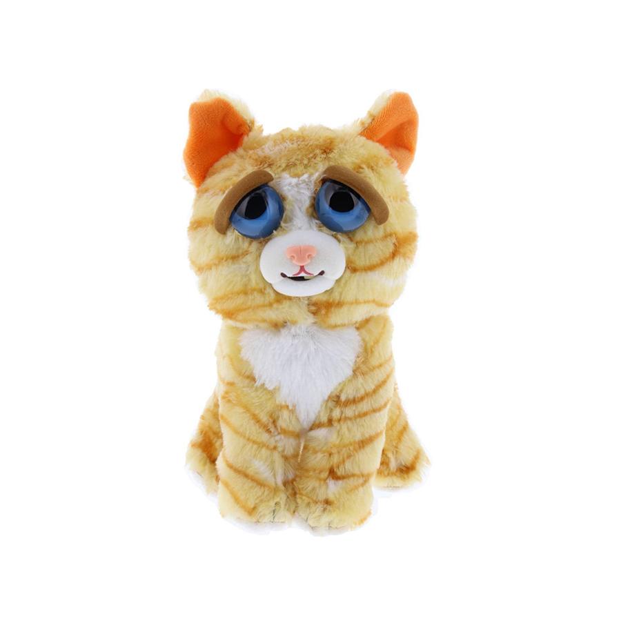 Feisty-Pet-Gato-2