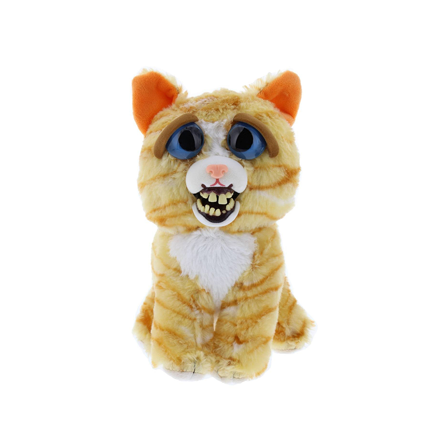 Feisty-Pet-Gato-3