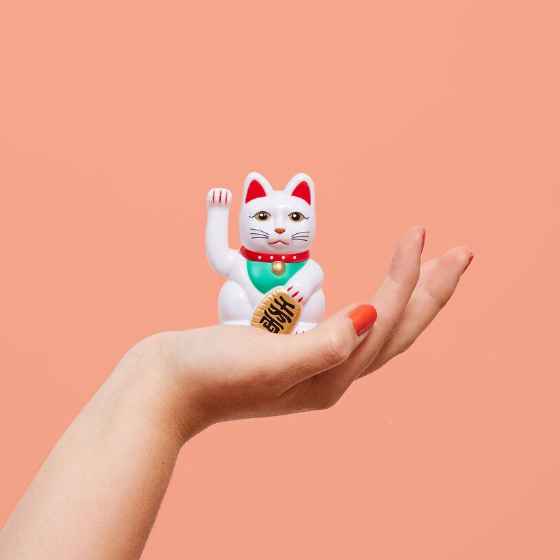 El Lucky Cat mas pequeño del mundo